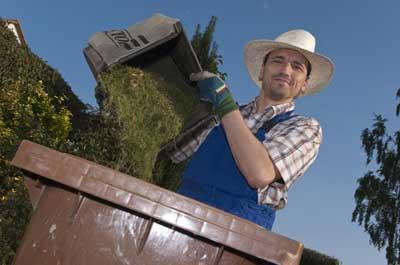 Image showing Garden waste