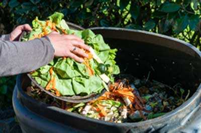 Image showing Home composting