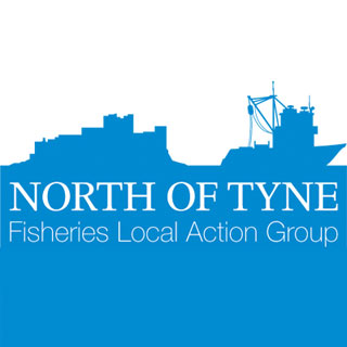 Image showing North of Tyne FLAG