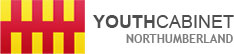 Youth Cabinet Logo