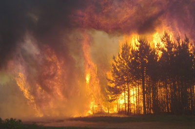 Wildfire Prevention Toolkit