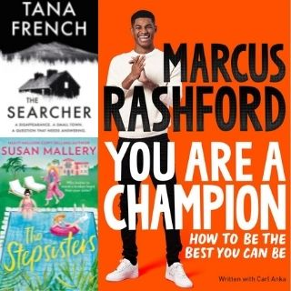 Book Covers for The Stepsisters, The Searcher and You are a Champion