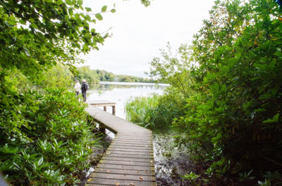 Country parks, visitor centres & coastal sites