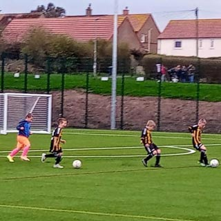 Image showing Berwick's 3G pitch is a big hit