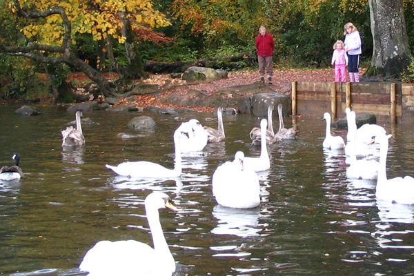 Image demonstrating County parks once again among the UK's best