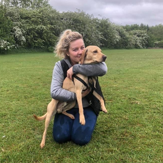 Image demonstrating Gino reunited with owner after 24 hour search
