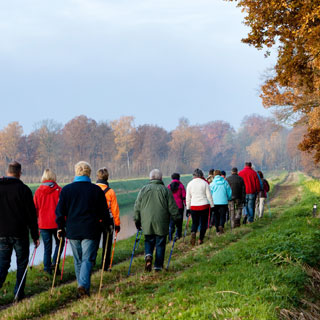 Image demonstrating Free autumn health walks to boost mood and fitness