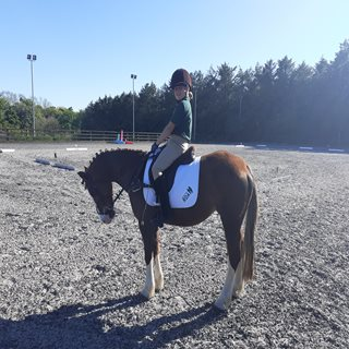Local RDA riders in the ribbons at national online finals