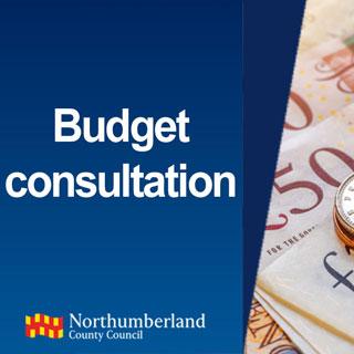 Budget consultation logo