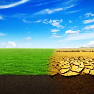 Green fields and desert representing climate change