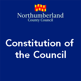 Constitution of the Council