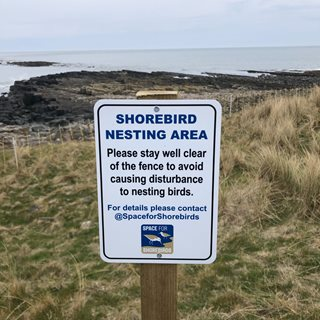 Photo of a sign about bird nesting areas
