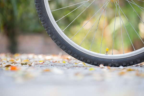 Photo of a bicycle wheel