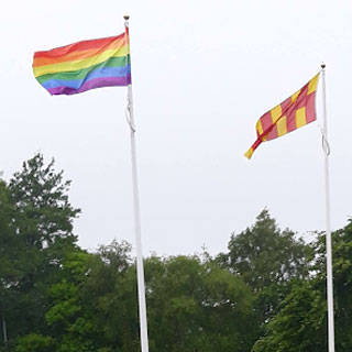 Image demonstrating Council is full of PRIDE