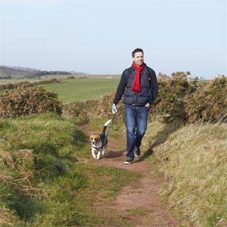 Image showing Information for Dog Walkers