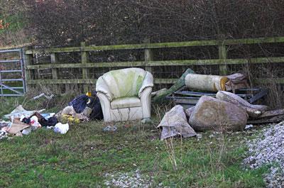 Image showing Environmental enforcement