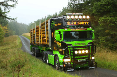 Image showing Timber transport